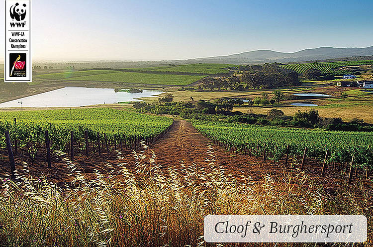 Cloof and Burgherspost Wine Estate