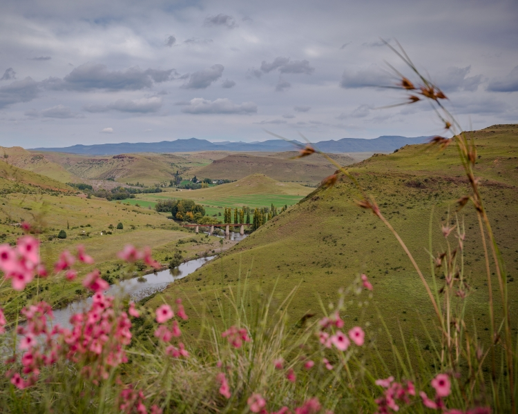 Coalition to boost financial support for sustainable landscapes